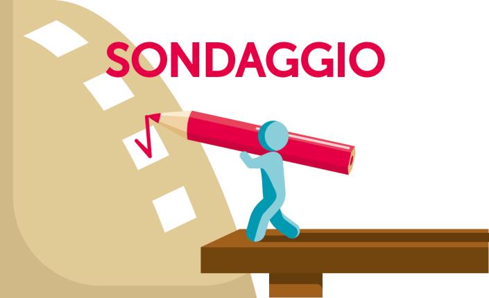 SONDAGGIO PER IL COMITATO DI GEMELLAGGIO