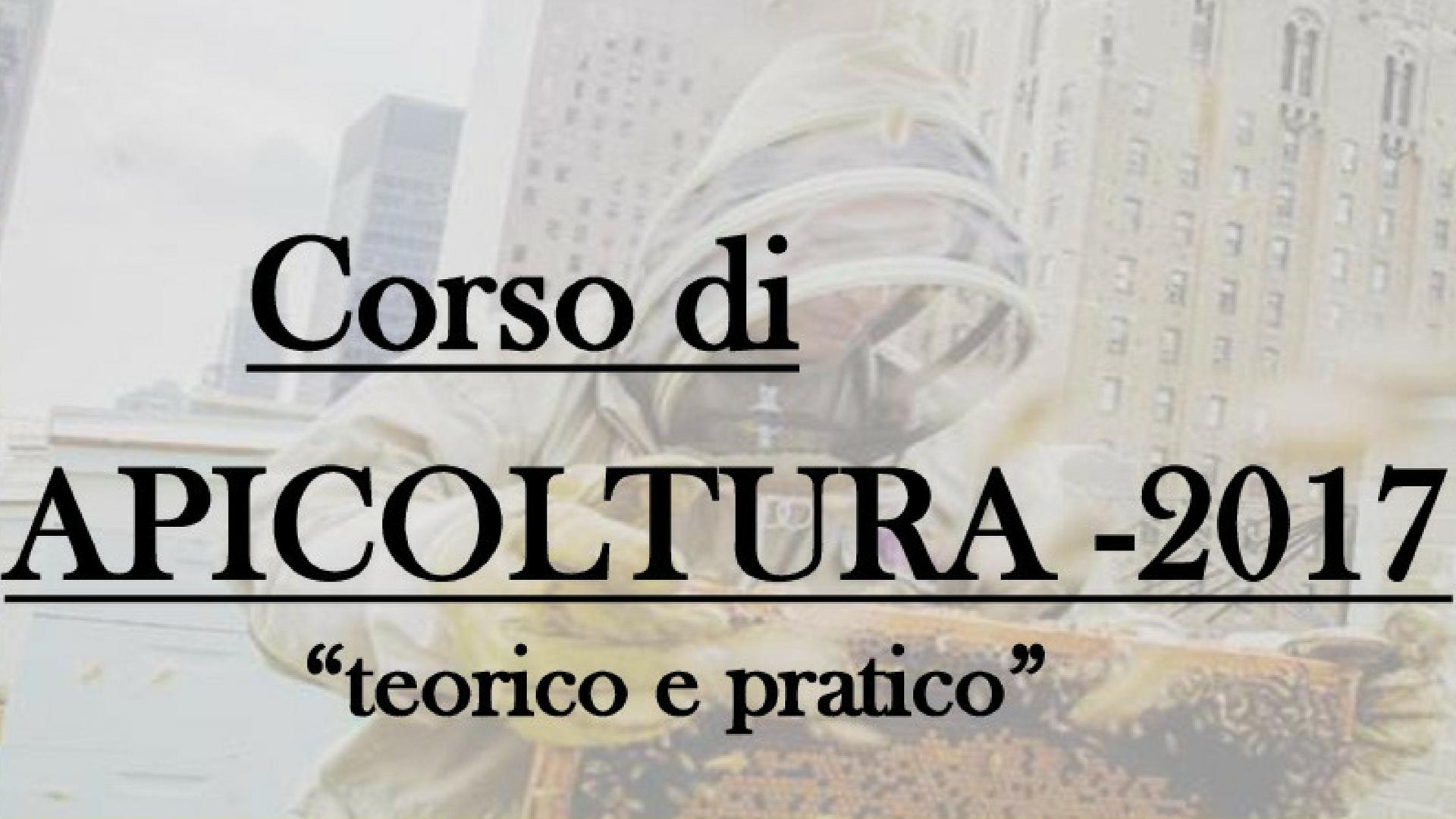 Corso di Apicoltura – Fondazione S. Chiara
